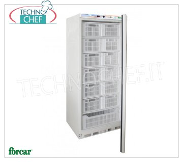 Forcar - Freezer-Freezer CABINET, lt. 555, Static, Temp. -18 ° / -22 ° C, Class B, mod.G-EF600CAS 1 Door Refrigerator / Freezer Cabinet, Professional, lt. 555, temperature -18 ° / -22 ° C, ECOLOGICAL in Class B, GAS R600a, static with internal fan, including 13 cassettes, V.230 / 1, Kw. 0 , 3, Weight 94 Kg, dim.mm.777x695x1895h