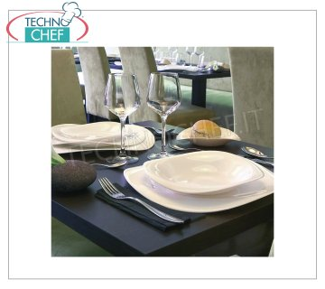 ARCOROC - TENDENCY collection in Zenix - Dishes for Restaurant DISHES, Tendency Zenix Collection, ARCOROC brand